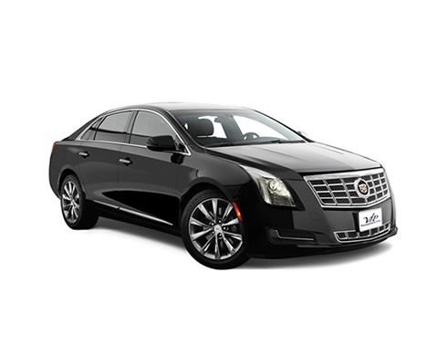 Cadillac XTS - VIP Wedding Transportation