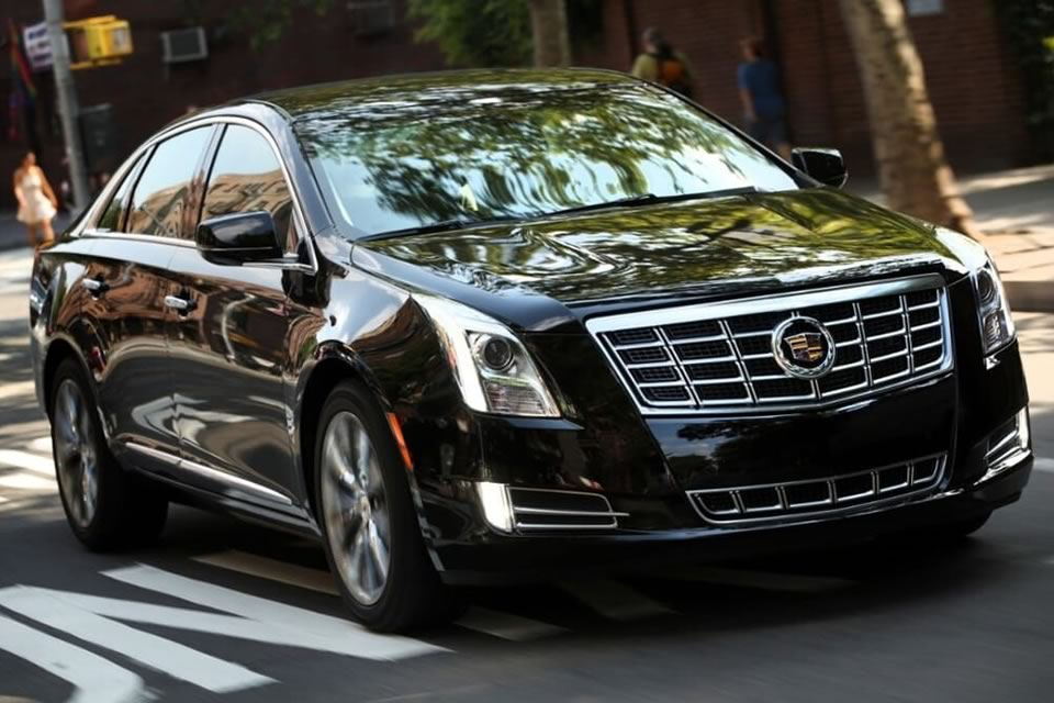 Luxury Sedans VIP Wedding Transportation